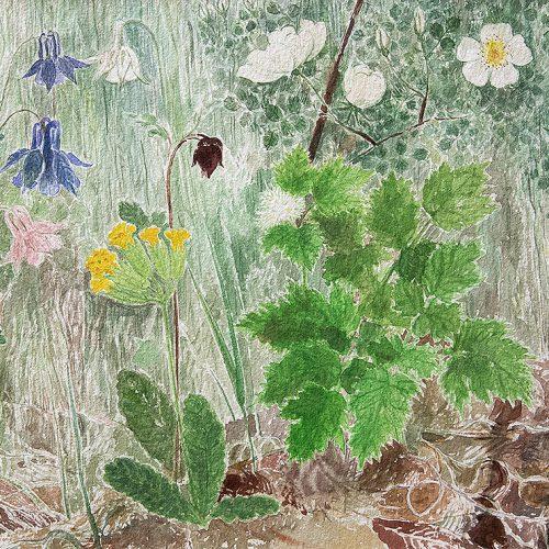 Akvarell 22,5 x 30 cm