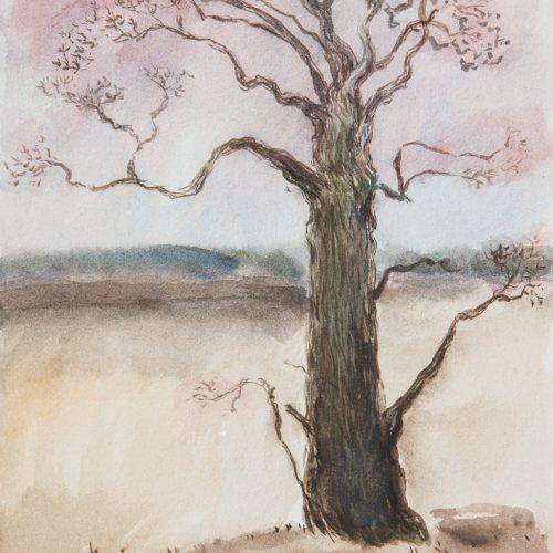 Akvarell 24 x 17 cm