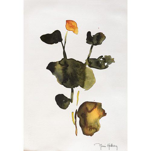Akvarell 24 x 33 cm