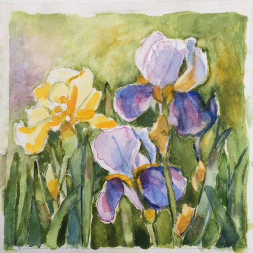 22 X 22 cm Akvarell