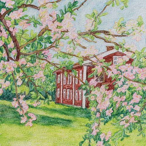 Akvarell 18 x 23,5 cm